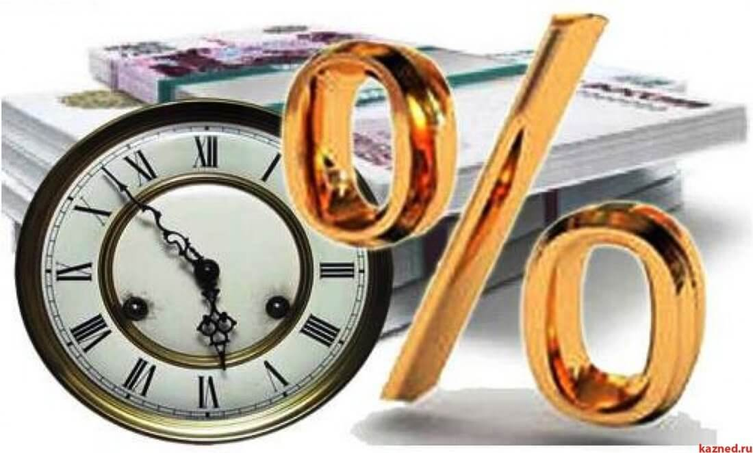 Чем отличается займ от кредита