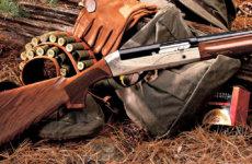 Что такое — разрешение на охотничье оружие?